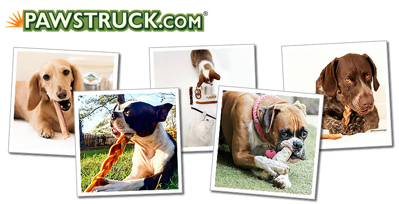 pawstruck-healthy-dog-treats