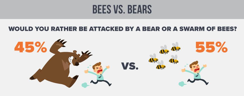 Bees-Vs-Bears-Edit